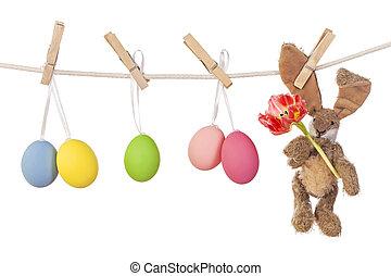 påsk eggar, och, kanin