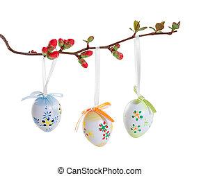 påsk eggar, på, a, blommande filial