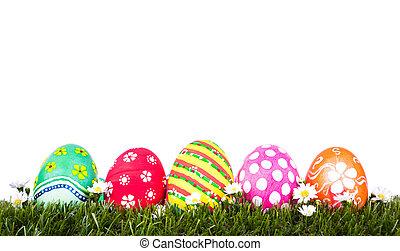 påsk eggar, på, frisk, grönt gräs, över, vit fond