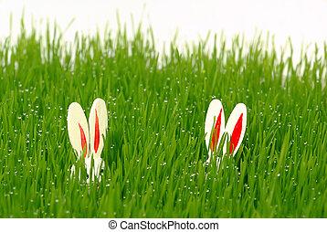 påsk kanin, 10