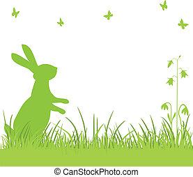 påsk kanin, in, den, äng