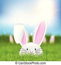 påsk kanin, in, gräs, 0203
