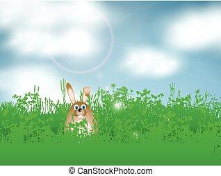 påsk kanin, in, gräs