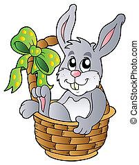 påsk kanin, in, korg