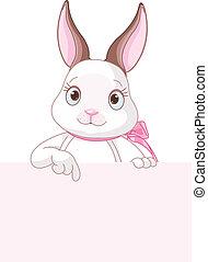 påsk kanin, pekande, nedåt