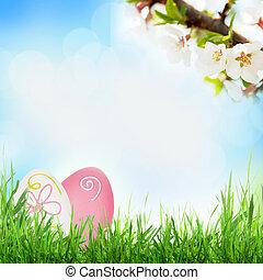 påsk, solig, fjäder, bakgrund