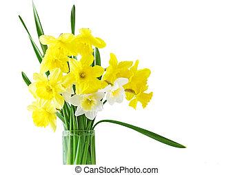 påskelilje, blomster