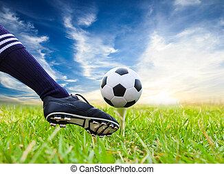 pé, chutando, bola futebol, ligado, baliza golfe