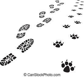 pé, homem, vetorial, impressões, cão