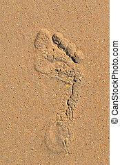pé, pessoa, areia, nu, traço