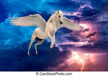 pégase, ailé, ailes, cheval, blanc, voler, diffusion, légendaire