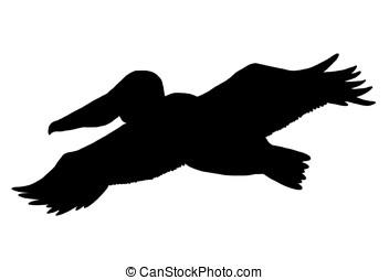 pélican, silhouette