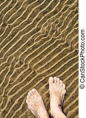 pés, em, raso, água