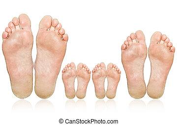 pés, family., grande, pequeno