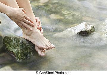 pés, floresta, riacho, womans