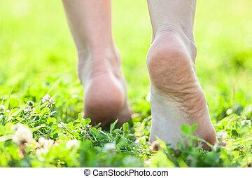 pés, verão, capim, nu, macio