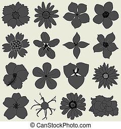 pétalo, flora, flor, icono