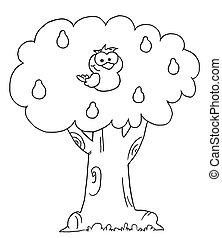 pêra, esboçado, árvore, perdiz