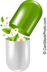 píldora, con, hierbas, y, camomile