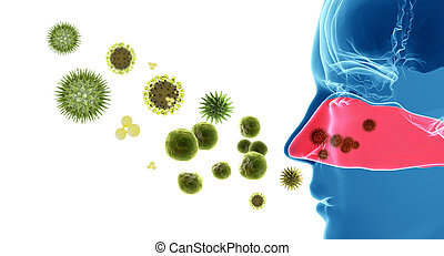 pólen, feno, alergia, /, febre