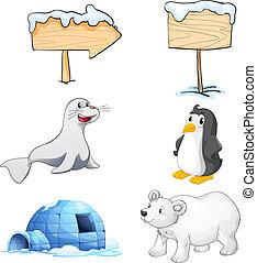 pólo norte, signboards, animais, igloo