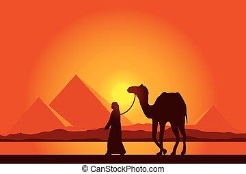 pôr do sol, egito, piramides, fundo, camelo, grande, ...