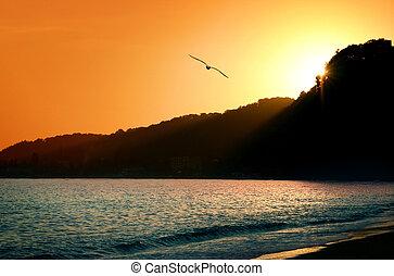 pôr do sol, em, a, mar