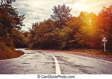 pôr do sol, floresta, estrada