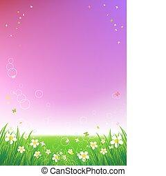 pôr do sol, fundo, verão, campo, verde