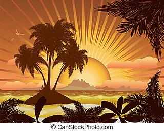 pôr do sol, ilha tropical