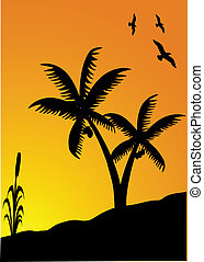 pôr do sol, pássaros, palmas