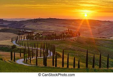 pôr do sol, sobre, a, verde, campos, ciprestes, árvores, e, dê estrada corda, em, tuscany, itália
