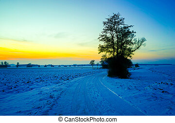 pôr do sol, sobre, vista, winterly, paisagem