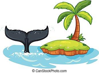 púpos ember bálnavadászat, farok, mellett, sziget