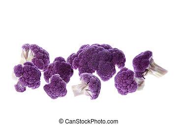 púrpura, aislado, coliflor