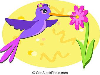 púrpura, flor rosa, colibrí