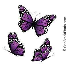 púrpura, tones., mariposas, vector, tres