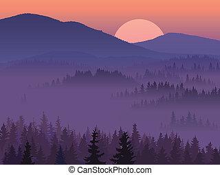 púrpura, valle, wood.