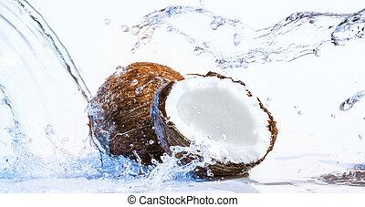 pęknięty, orzech kokosowy
