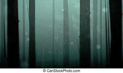 pętla, oczarowany, las, hd