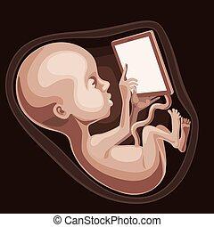 płód, cudo