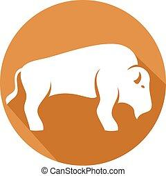 płaski, bizon, ikona