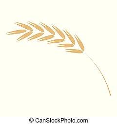płaski, dojrzały, prosty, -, ilustracja, wektor, ziarno, żółty, zboże, rolniczy, ucho, nasienie, plant., ikona