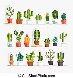 płaski, kaktus, style.