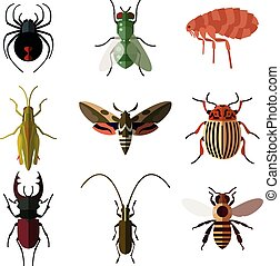 płaski, owad, komplet, icons2