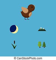 płaski, ptak, ekologia, wieżyczka, elements., również, księżyc, ożypałka, zawiera, drzewo, wektor, las, komplet, inny, objects., ikona
