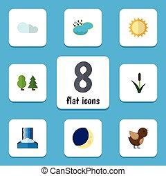 płaski, ptak, komplet, elements., natura, zawiera, również, las, wektor, trzcina, słoneczny, objects., laguna, inny, staw, ikona