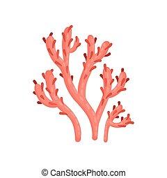 płaski, roślina, ecosystem., coral., miękki, życie, waters., tropikalny, jasny, wektor, morze, ocean, marynarka, czerwony, ikona