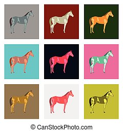 płaski, styl, komplet, koń, ilustracja, wektor