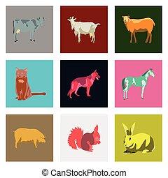 płaski, styl, komplet, zwierzęta, ilustracja, wektor